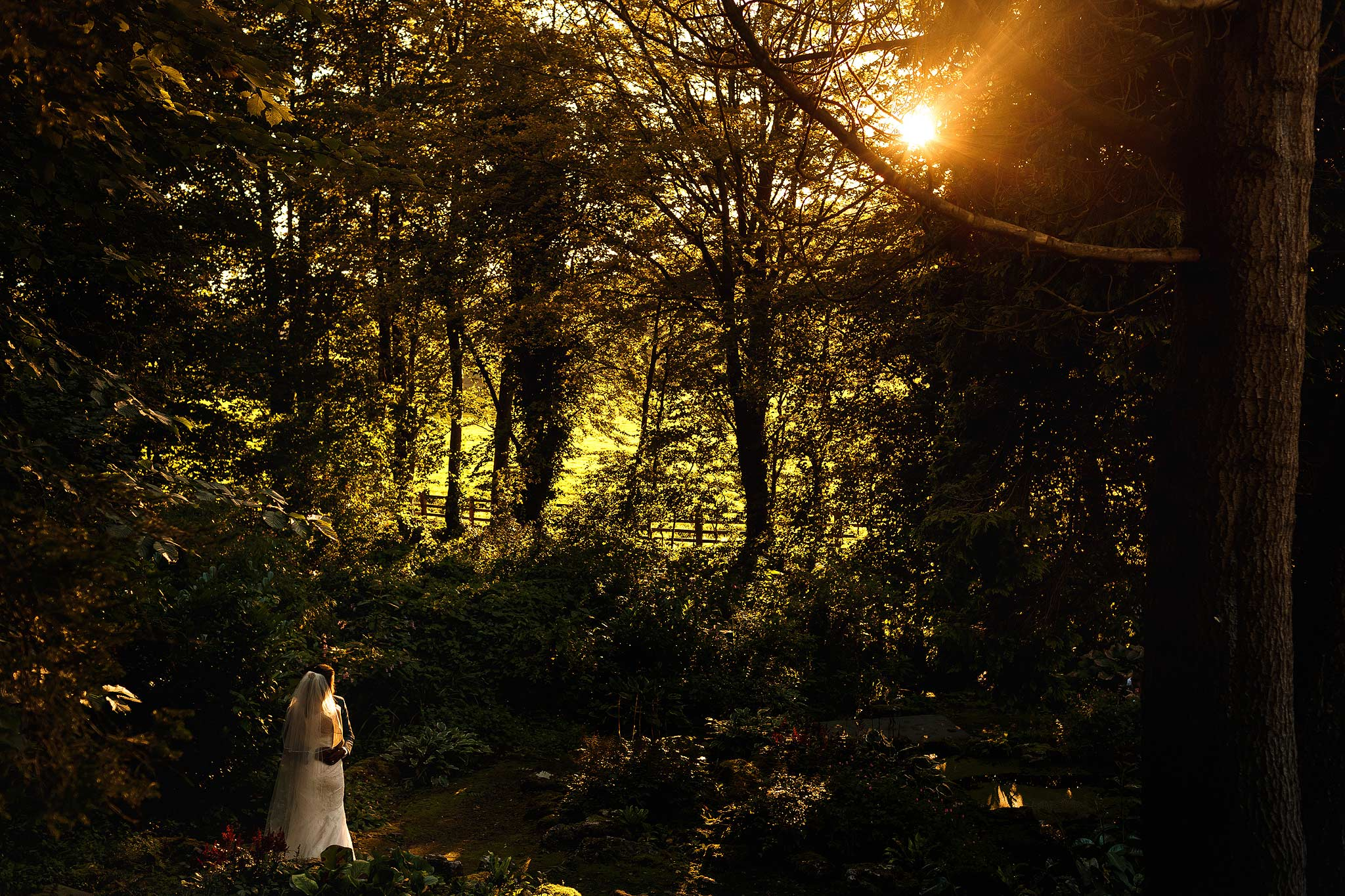 bride and groom in the rockery at mitton hall during sunset