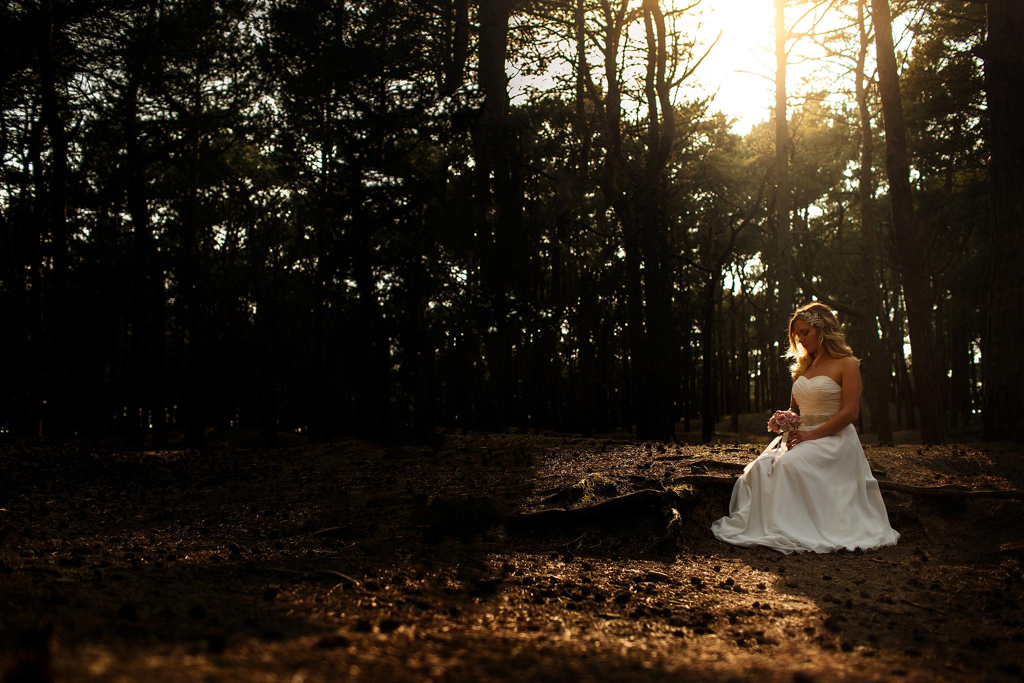 Bride sat with sunlight behind her on a woodland shoot