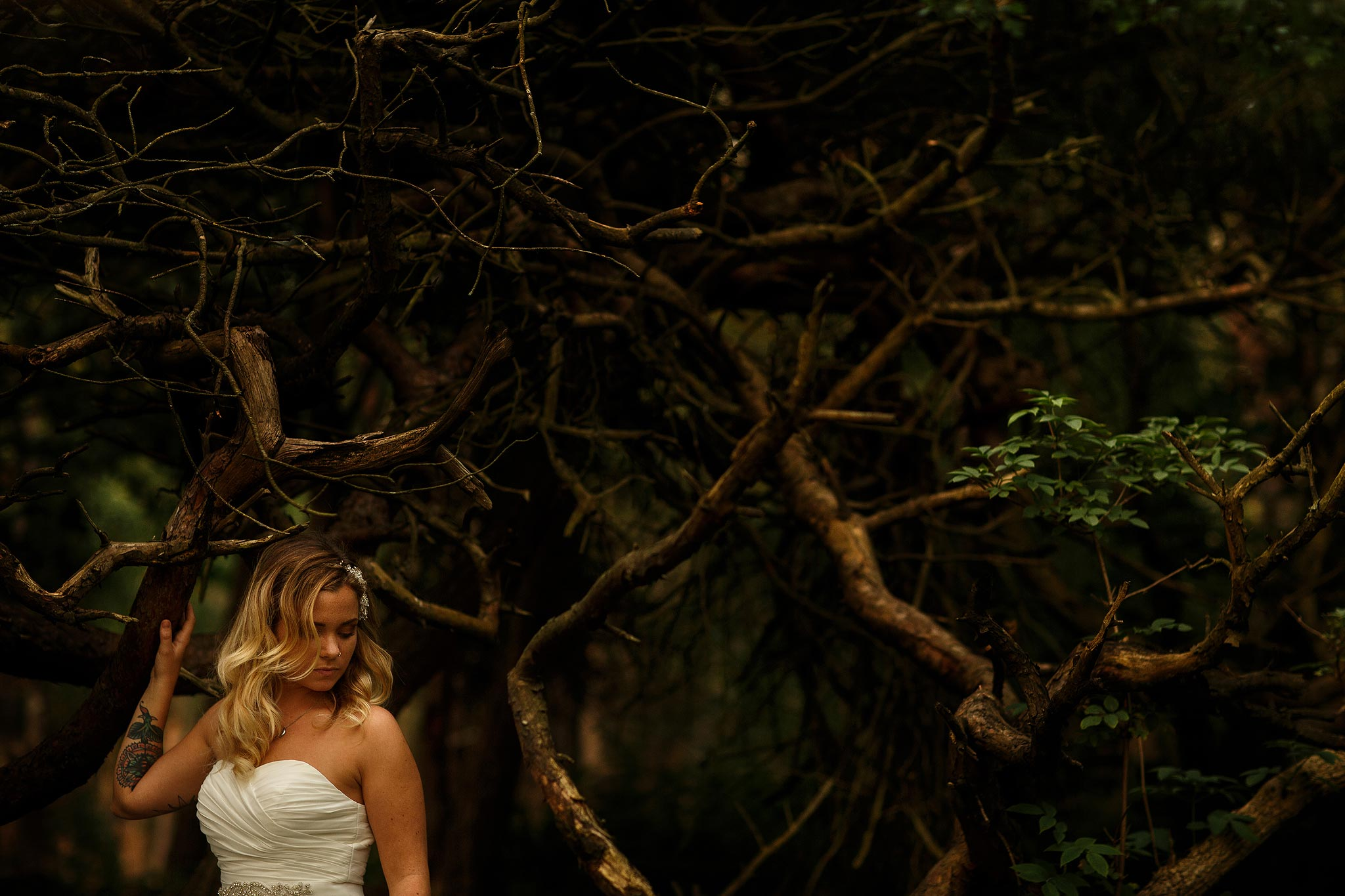 Bride sat in a tree on a woodland photoshoot