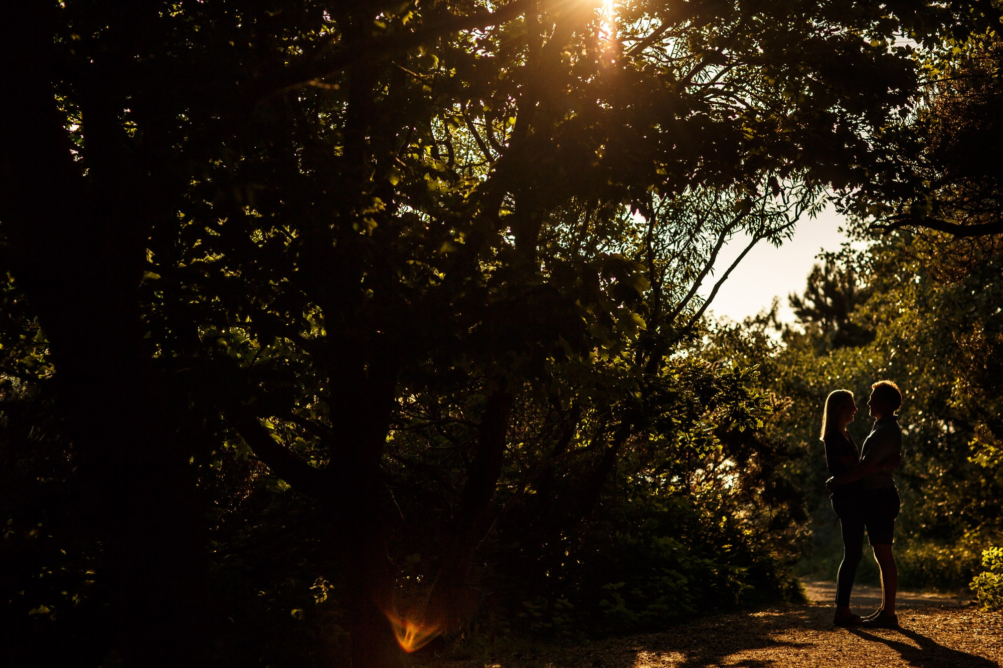 couple framed by trees in the woodland at Formby with gorgeous sun flare