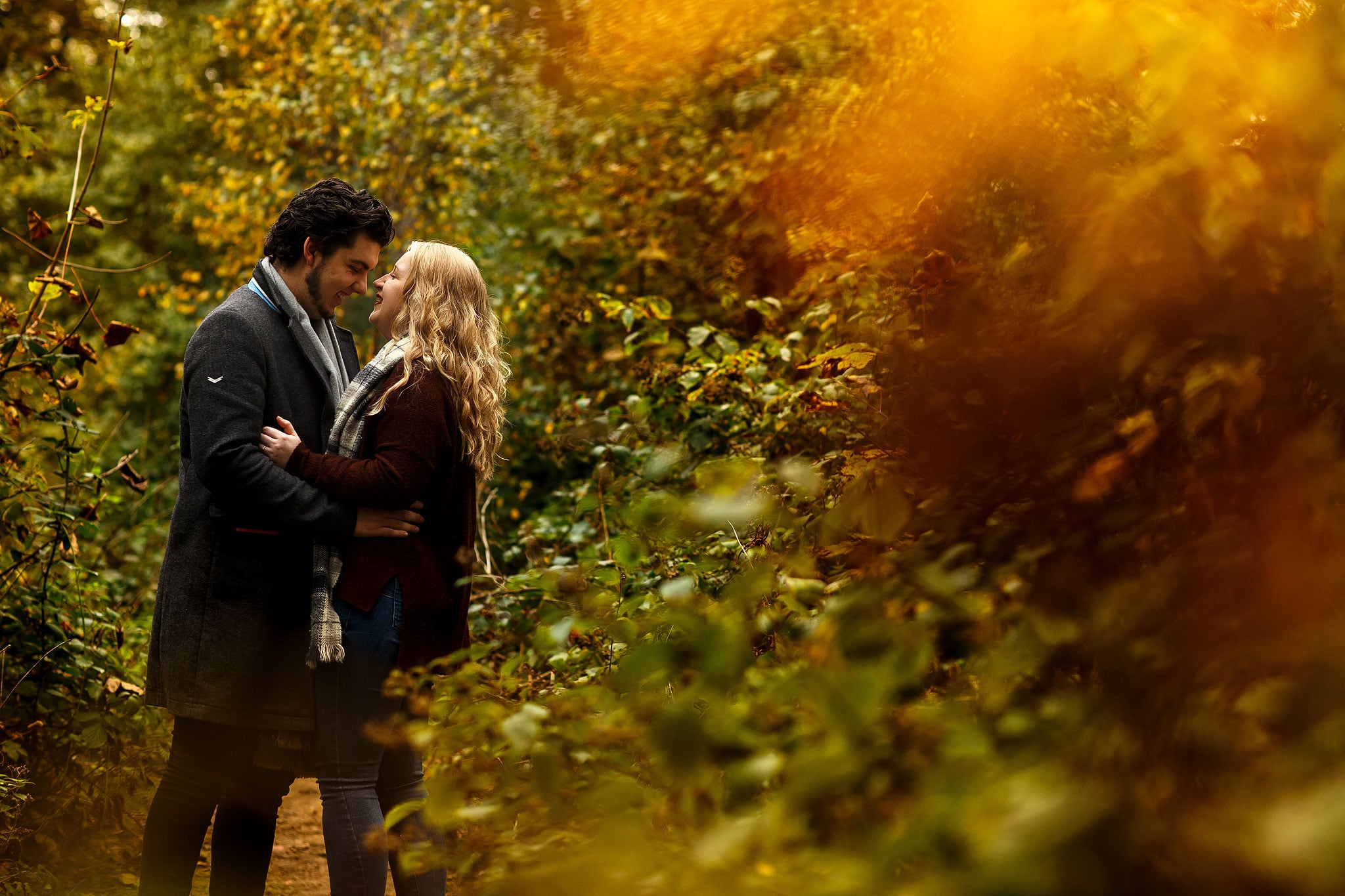 Autumn engagement shoot in the woods with golden leaves.