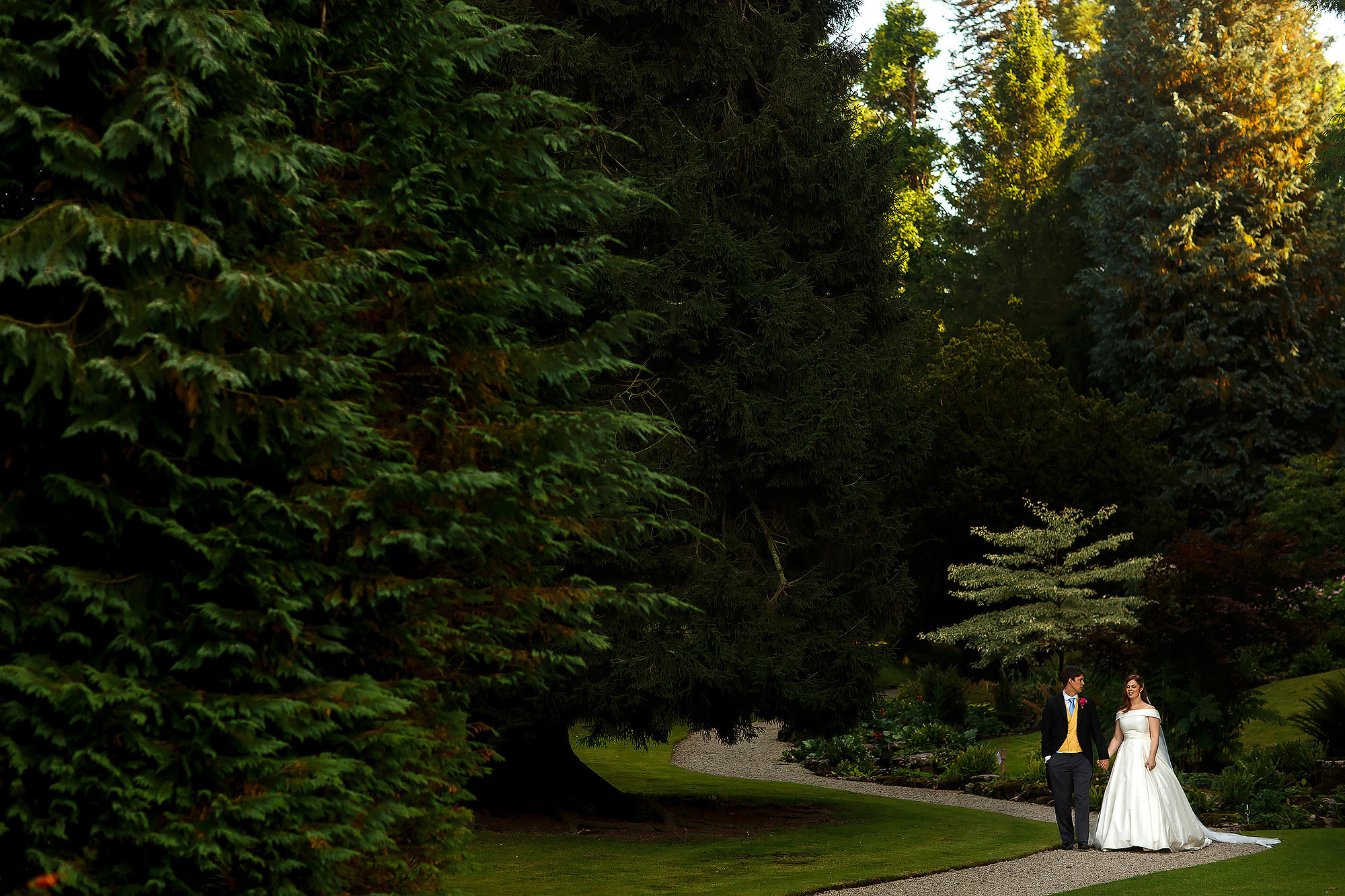 Bride and groom walking through the gardens and large fern trees down a gravel pathway hand in hand | Lake District Wedding by Toni Darcy Photography